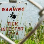 Stay away from ticks